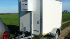 Kühlanhänger 1300 kg einachser 2453 x 1446 x 1800 mm bis plus 2°C Kühlung – 100 km/h