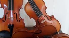 Geige / Violine mieten, Markenprodukt mit Meisterservice