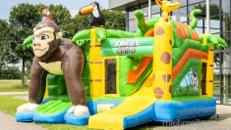 Hüpfburg Multiplay Jungle Safari 5,0x4,5x3,5 (LxBxH) Geburtstag,Party,Feier,Event