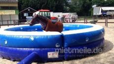 Horseriding / Pferdereiten