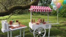 CandyBar für Hochzeiten/inklusive Ausstattung