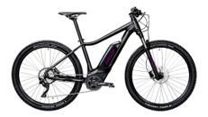 E-Bike Pedelec MTB Unisex Lady Youth Elektro Akku Fahrrad EBike