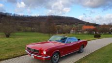Ford Mustang Cabrio zu vermieten, Hochzeit, Selbstfahrer oder mit Chauffeur.