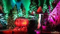 Der FUNKELWALD - ein verzauberter Märchenwald im FUNKELLAND