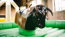Bull Riding, Rodeo Reiten, Surfing Simulator, Flaschen Reiten, Rentier Reiten