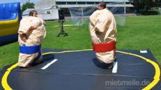 Sumo Wrestling / Sumo Ringen / Sumo Fatsuit