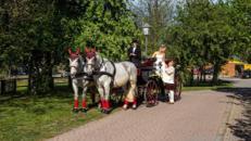 Hochzeitskutsche ganz nach Wunsch