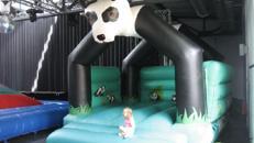 Hüpfburg Panda
