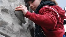 Kletterwand / Kletterfels  inkl. kostenloser Hüpfburg!!!!!