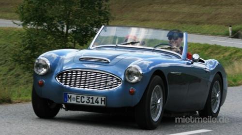 Oldtimer / Austin Healey / Sportwagen / Auto / Legende / Cabrio