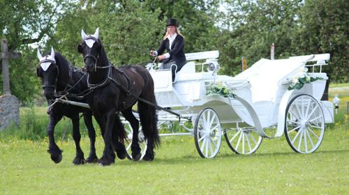 Hochzeits-Kutschfahrten