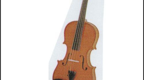 Viola / Bratsche Vermietung