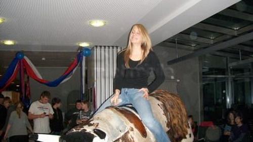 American Rodeo -Bullriding.  Inkl. MWSt.