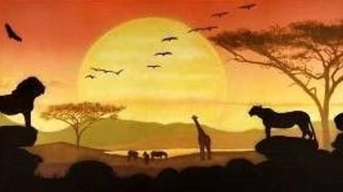 Sonnenuntergang in der Savanne Kulisse, Kulisse, Savanne, Sonne, Sonnenuntergang, Afrika, afrikanisch, Tiere, Wildtiere