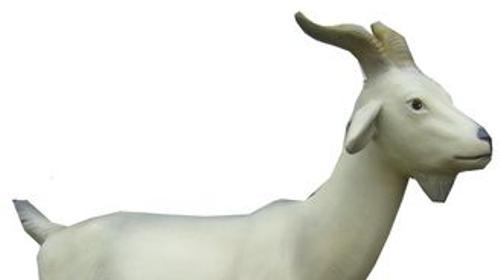 Ziege Figur, Ziege, Bock, Ziegenbock, Geissbock, Tier, Figur, Dekoration, Event, Messe, Veranstaltung, leihen, mieten