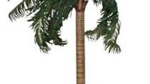 Palmen, Palme, Strand, Beach, Küste, Dekoration, Baum, Palmengewächse, Attrappen, Meer, Karibik, Event, Messe