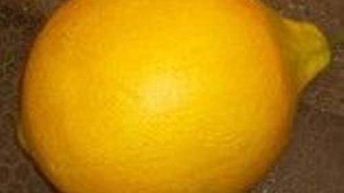 Zitronen, Zitrone, Frucht, Citrusfrucht, Tropenfrucht, sauer, Tropen, Obst, Event, Messe, Veranstaltung, leihen, mieten