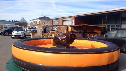 Bullring ~ Rodeo Bulle