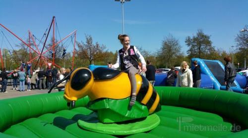 Bienenreiten - Rodeo - Simulator mieten