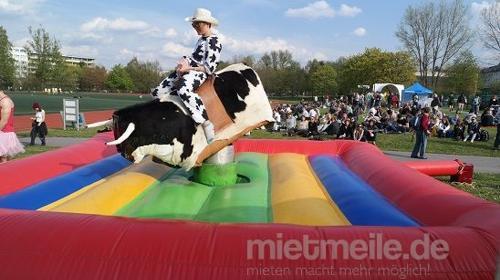 Bullriding / Rodeo/  Bulle reiten inkl. Personal und Haftpflichtversicherung