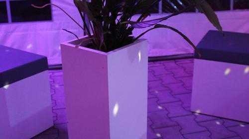 Lounge - Blumensäule mit Blumen / Blumensäule / Blumen / Dekoration
