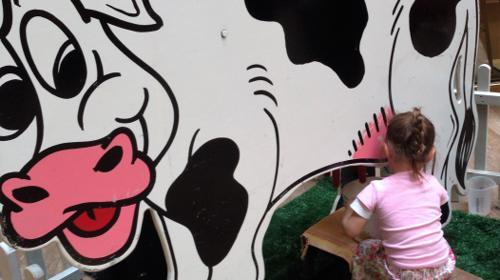 """Melkwettbewerb mit Kuh """" Elsa """""""