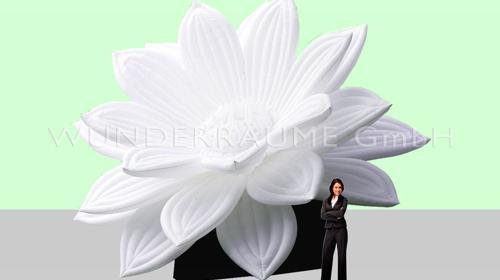 Seerose XXL - WUNDERRÄUME GmbH vermietet: Dekoration/Kulisse für Event, Messe, Veranstaltung, Incentive, Mitarbeiterfest, Firmenjubiläum