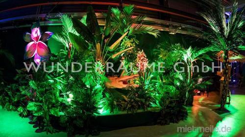Kunstpflanzen & Palmen - WUNDERRÄUME GmbH vermietet: Dekoration/Kulisse für Event, Messe, Veranstaltung, Incentive, Mitarbeiterfest, Firmenjubiläum