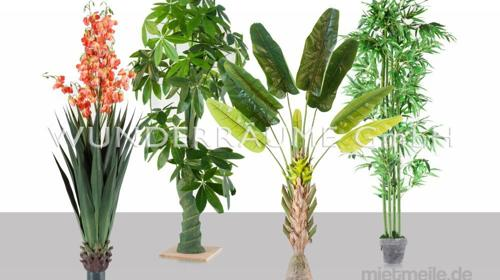 tropische Kunstpflanze L - WUNDERRÄUME GmbH vermietet: Dekoration/Kulisse für Event, Messe, Veranstaltung, Incentive, Mitarbeiterfest, Firmenjubiläum