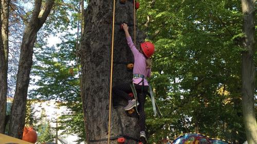Kletterparkour an Eurem Baum