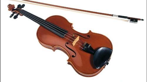 Violinen zur Miete