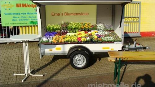 Blubber Verkaufsanhänger (Leerwagen) 1300 kg 2510 x 1320 x 1520 - 100 km/h Verkaufswagen Trödelmarkt Anhänger Trödelmarkt Blumenstand