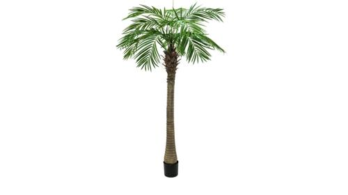 Deko Palmen 300cm - Dünengras - Bäume