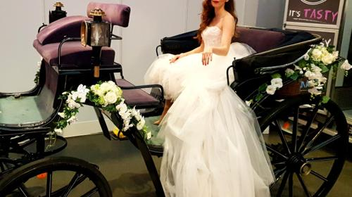 Hochzeitskutsche mit edlen Friesenpferden, Hochzeitsgeschenk, Hochzeitsfeier, Hochzeitslocation, Oldtimer, Brautauto, Braut, Hochzeitsfeier, Geschenk, Gutschein, Geburtstag,Überras