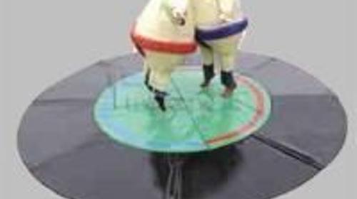 Sumo Ringen, Sumo Wresting - Sumoringen