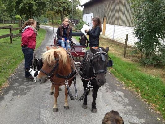 Hochzeitskutsche mieten & vermieten - Kutschfahrten  in Hagen
