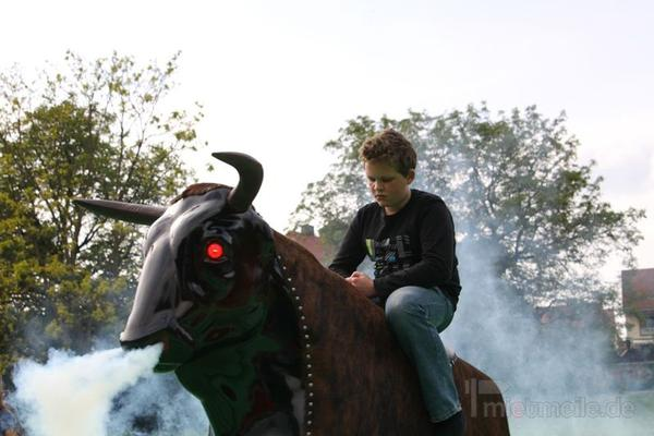 Bullriding mieten & vermieten - Bullriding Sonderangebot 2015! Profi Anlage! in Hünfelden