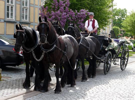 Hochzeitskutsche mieten & vermieten - Romantische Hochzeitskutschen in Worbis