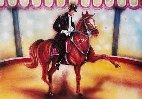 Kulissen mieten & vermieten - Zirkus Pferd mit Reiter Kulisse, Pferd, Reiter, Zirkus, Cirkus, Manege, Kulisse, Spaß, Unterhaltung, Domteur in Kamp-Bornhofen