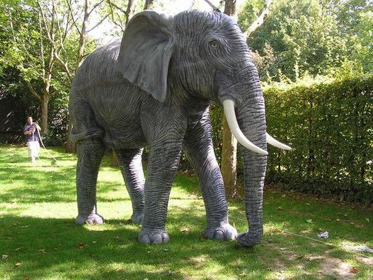 Dekofiguren mieten & vermieten - Elefant Figur XXL, Elefant, Afrika, Asien, Indien, Elefantenbulle, Stoßzähne, Stoßzahn, afrikanisch, asiatisch, indisch in Lahnstein