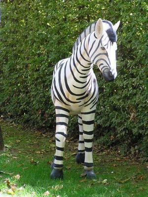 Dekofiguren mieten & vermieten - Zebra Figur, Zebra, Savanne, Afrika, afrikanisch, Figur, Steppe, Tier, Dekoration, Zoo, Zirkus, Event, Messe in Lahnstein