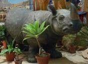 Dekofiguren mieten & vermieten - Nashorn Figur, Nashorn, Rhinozeros, Rhino, Figur, Tier, Wildtier, Zoo, Afrika, afrikanisch, Dekoration, Event, Messe in Kamp-Bornhofen