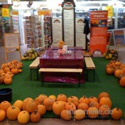 Basteln & Malen mieten & vermieten - Halloween Kürbisse schnitzen inkl. 19% MwSt. in Münnerstadt