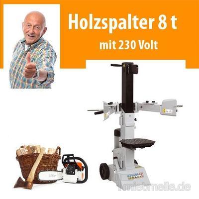 Holzspalter mieten & vermieten - 8 t Holzspalter 230 Volt vertikal in Dresden