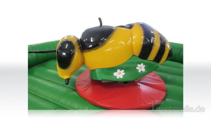 Bullriding mieten & vermieten - Bienenreiten - Rodeo - Simulator mieten in Schwerin