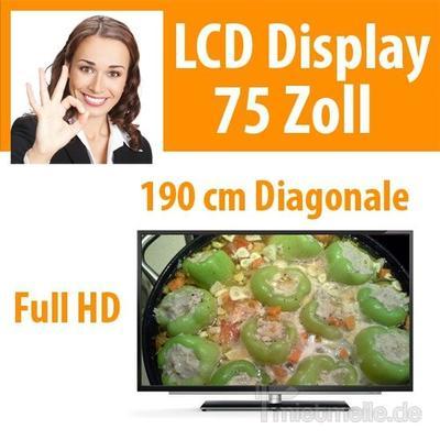 "LCD Monitore mieten & vermieten - 75"" LCD Display Fernseher TV Monitor in Dresden"