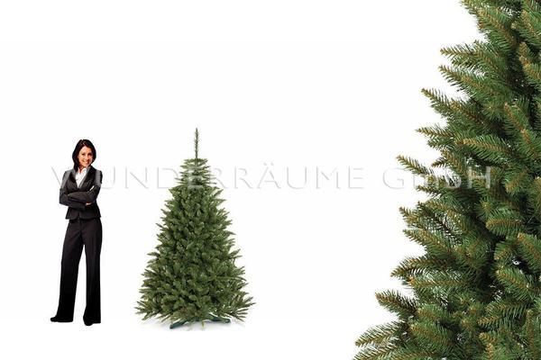 Pflanzen mieten & vermieten - Nadelbaum Fichte, M - WUNDERRÄUME GmbH vermietet: Dekoration/Kulisse für Event, Messe, Veranstaltung, Incentive, Mitarbeiterfest, Firmenjubiläum in Lichtenstein/Sachsen
