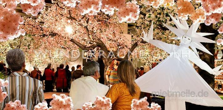 Pflanzen mieten & vermieten - Kirschblüten-Baum XL, rosa - WUNDERRÄUME GmbH vermietet: Dekoration/Kulisse für Event, Messe, Veranstaltung, Incentive, Mitarbeiterfest, Firmenjubiläum in Lichtenstein/Sachsen