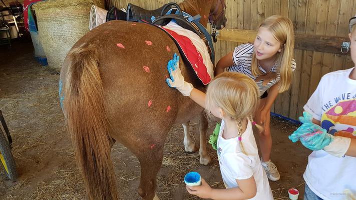 weitere Eventmodule mieten & vermieten - Ponyevents, Ponyreiten, Ponygeburtstag, Kindergeburtstag, Ponys mieten, Ponykutsche Kutsche, Mädchentraum, Mädchengeburtstag, Prinzessin, Geschenk, Kind, Kinder, Freizeit, Ausflug, in Leichlingen