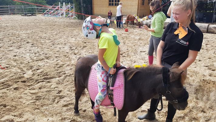 weitere Eventmodule mieten & vermieten - NEU für Kinder Ponyführerschein - Kindergeburtstag - Kindesrfest - reiten - Pony - Geburtstag - Ponys/Pferde für Ihr Firmenevent in Leichlingen